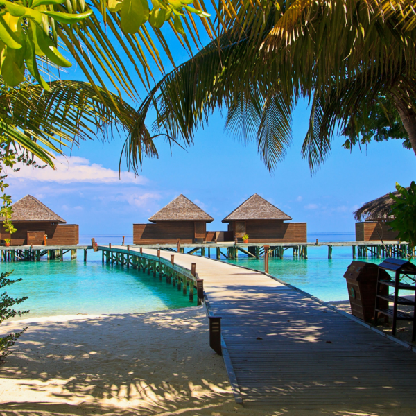 Seven Things to Do in the Maldives