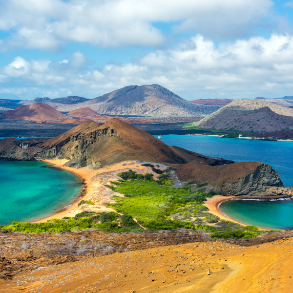 What the Galapagos Islands Have to Offer Tourists